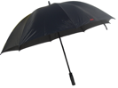 Sturm-Schirm